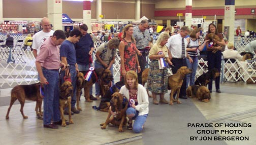 Parade-of-Hounds-Group0039
